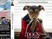 Doothaitv : A Dogs Way Home (2019) : เพื่อนรักผจญภัยสี่ร้อยไมล์