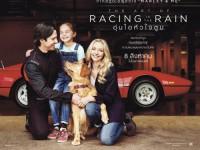 Doothaitv : The Art of Racing in the Rain (อุ่นไอหัวใจตูบ)