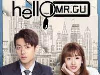 Hello Mr. Gu (รักสุดป่วนของคุณชายสุดเป๊ะ)